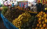 La Sedagro busca garantizar la producción de alimentos inocuos