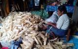 Utilizan las hojas para hacer tamales chile / Rosaura Hernández
