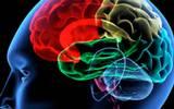 Encontraron dos proteínas -aún sin ser descritas a escala mundial- que se modifican con el Alzheimer
