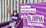 La activista, Ana Karina Chumacero, denunció que a la fecha ninguno de los diputados federales, incluyendo a los de Morelos, han dado respuesta o manifestado su apoyo