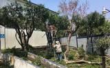 En Jiutepec se realizan trabajos de mantenimiento en planteles educativos públicos de todos los niveles ubicados en el territorio
