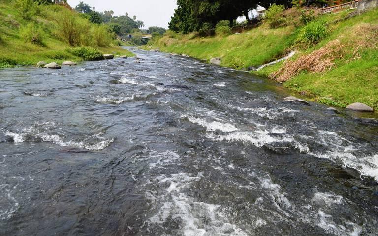 Morelos alberga especies que han llevado a implementar trabajos de restauración a fin de protegerlas