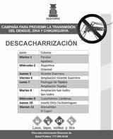 Las autoridades organizan jornadas de limpieza a fin de prevenir enfermedades como Dengue, Zika y Chikungunya